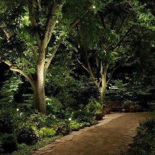 Landscape lighting brightening the path and natural areas