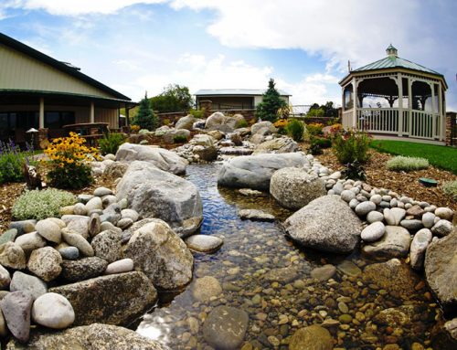 Water Features for Anyone's Yard