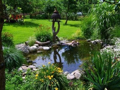 Garden pond in colorado springs