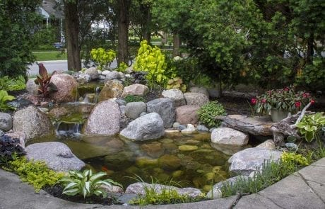 Medium sized backyard pond in colorado springs