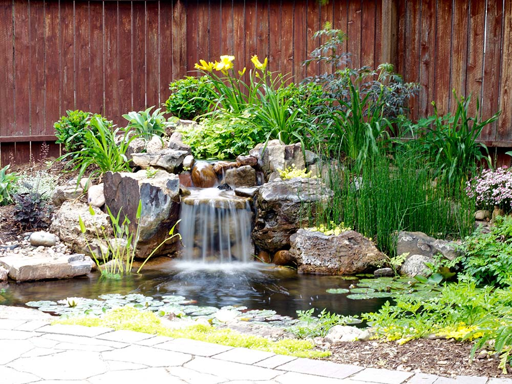 New Koi Pond Installation In Colorado Springs