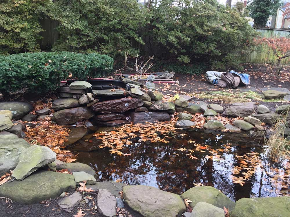 Pond Renovation Colorado Springs - Before