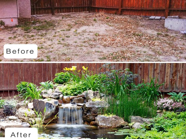 Before and after installing an ecosystem pond